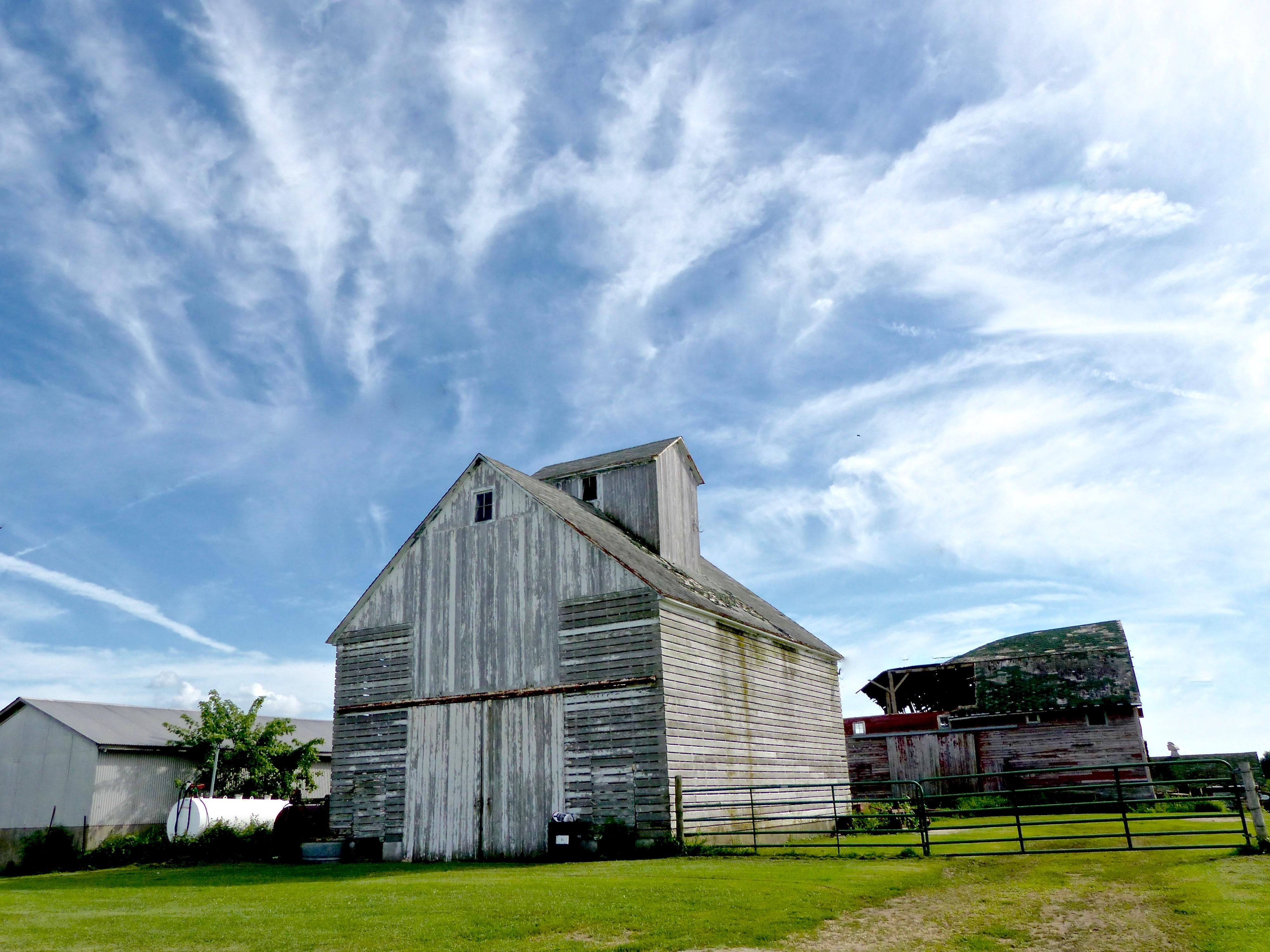 Barn Dixon 816