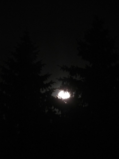 almost-full-harvest-moon-916
