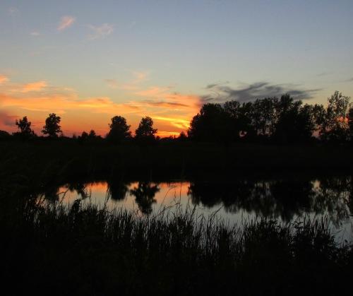 sunset-cod-91216