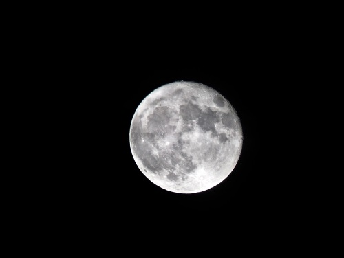 Hunters Supermoon 10:16.jpg