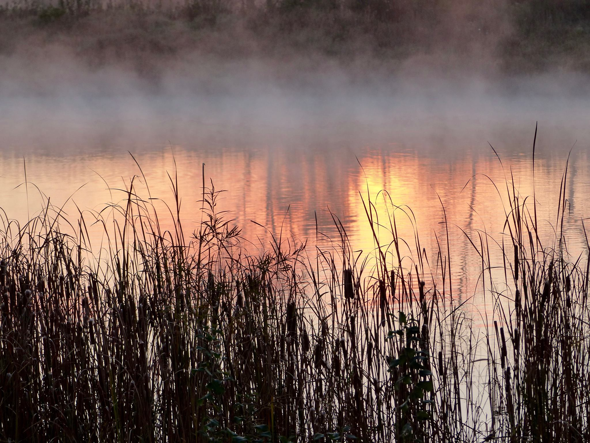 Sunrise, Hidden Lake 2016.jpg