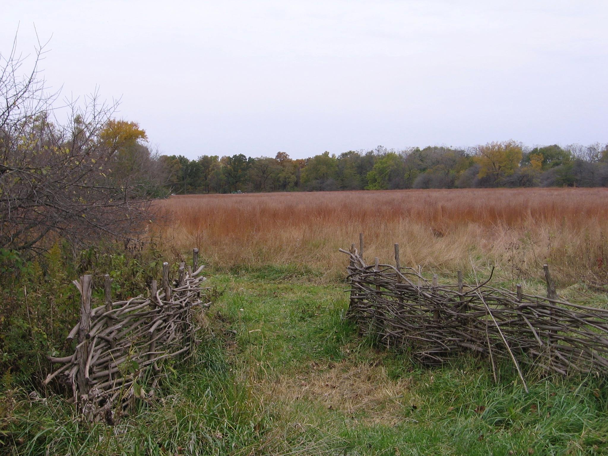 Midewin 2012 fence.jpg