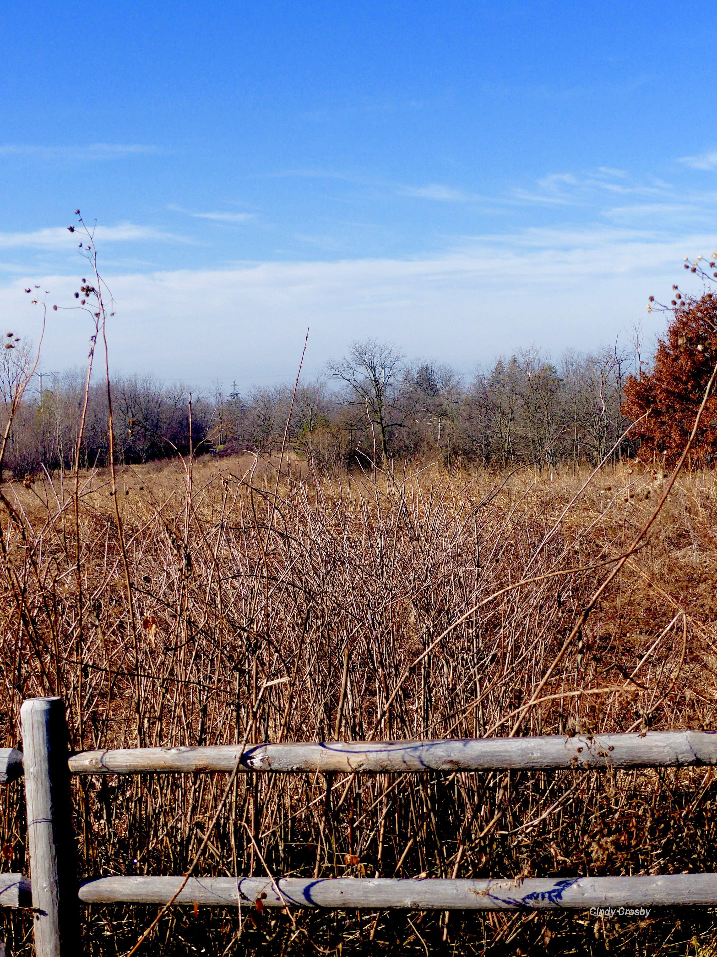 Belmont Prairie Fence 121618WM.jpg