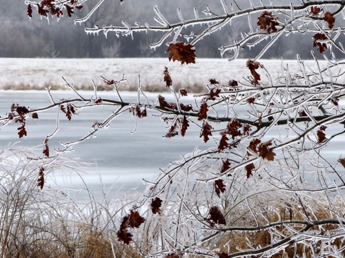 Hidden Lake Ice Capades 21219.jpg