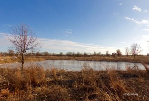 COD Russell Kirt pond WM3319.jpg
