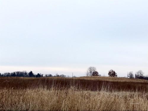 Beisecker Prairie 121519WM full landscape.jpg