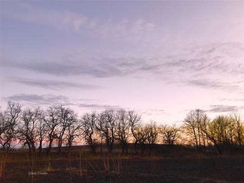 COD sunset 21320WM.jpg