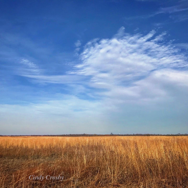 Springbrook Prairie 3120WMWMWM.jpg