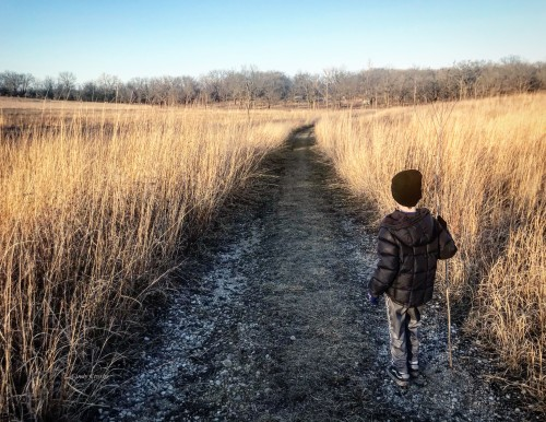 WMTony explores the Schulenberg Prairie 3-2020.jpg