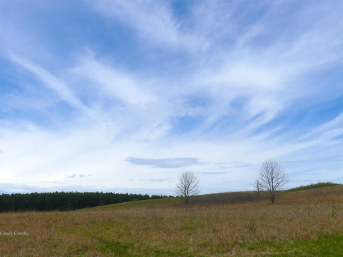 Nachusa Grasslands 5220skiesWM.jpg