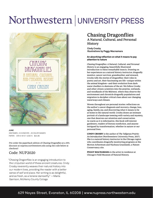 Preorder Savings Chasing Dragonflies (1)