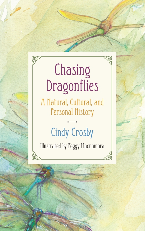 Chasing Dragonflies Final Cover 620.jpg