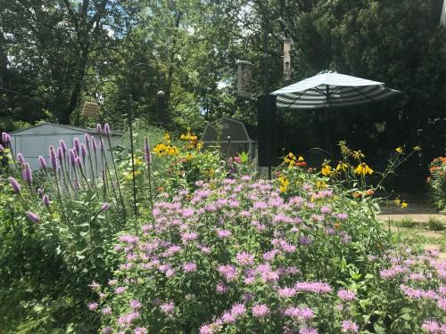 Garden 71620WM