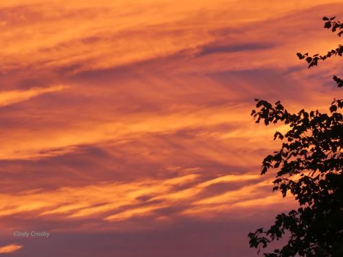 SunsetSkies8120WM.jpg